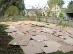 Edible Forest Gardens -with cardboard.