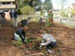 Edible Forest Gardens -with sheetmulched.